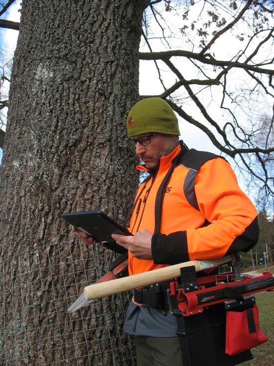 Kontrolle des Baumkatasters